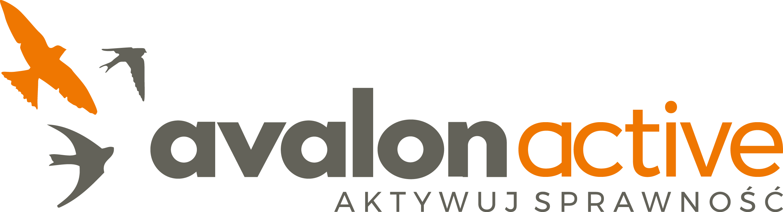 Nowe logo Avalon Active